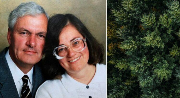 Vyras velionės žmonos garbei pasodino 6000 medžių. Po 20 metų vyro paslaptingas projektas tapo matomas visiems