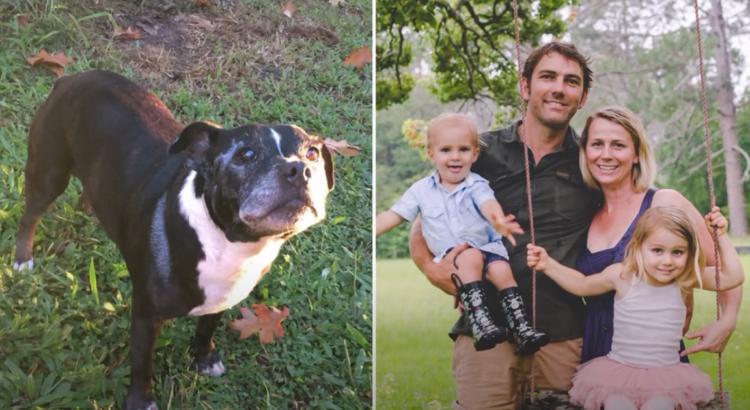 Prie šeimininko pribėgo jo šuo, kuris buvo visas šlapias ir elgėsi labai keistai. Jis pasekė savo gyvūną ir pamatė tai, kas sustingdė jam kraują