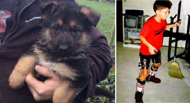 Ūkininkas pardavinėjo veislinius šuniukus, kai prie jo priėjo mažas berniukas. Jis neturėjo pinigų, tačiau tai, ką vaikas parodė vyrui, privertė jį apsiverkti